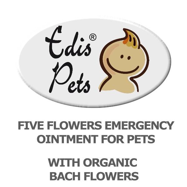 www.bachfloweressences.co.uk pdf